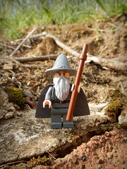 YOU SHALL NOT PASS (candice-nguyen) Tags: nature garden toys moss backyard rocks lego wizard lotr staff wise gandalf demon tolkien peterjackson balrog stormcrow thelordoftherings mithrandir gandalfthegrey minesofmoria istari youshallnotpass greypilgrim