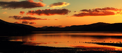 Silhouette on Bala (Jo Bowman) Tags: sunset black mountains water beautiful birds silhouette wales clouds canon reflections boat bala panaorama 60d 1785mmcanonlens