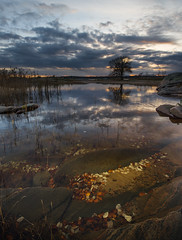 Sunken leaves (- David Olsson -) Tags: autumn sunset lake tree fall reed nature water clouds reflections landscape mirror golden sand nikon october rocks underwater sundown cloudy sweden stones tripod pebbles cliffs karlstad mirrored fx polarizer vnern hst lonelytree cpl 2012 clearwater fallenleaves vrmland 1635 polarizingfilter d600 1635mm lakescape skutberget 2exposures lonesometree manualblend manuallyblended 1635vr