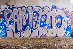 PALMETTO FAM (TheLost&Found) Tags: street bridge family urban streetart west color art fall minnesota wall train canon bench typography photography eos graffiti midwest paint painted letters creative tracks cities minneapolis twin msp rail best mpls 7d opaque graff minds fam aerosol saintpaul exploration mn mid freight rolling aerosolart palmetto pf urbex benched benching beps opak opake opaq opaqe thelostfound