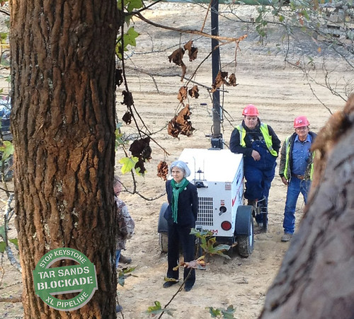 Dr. Jill Stein in handcuffs from the trees