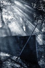 The rake (Keartona) Tags: light mist halloween misty mono smoke creepy rake bonfire gravestone sunbeams garveyard