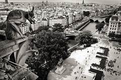 Notre Dame. Paris (Igorza76) Tags: bw white black paris france blanco ro river de cathedral pano cit capital negro gothic catedral bn notredame gargoyle cathdrale estilo zb notre dame francia zuri isla pars gargola sena nuestra panormica seora gtico katedral beltz katedrala blackwhitephotos gotikoa