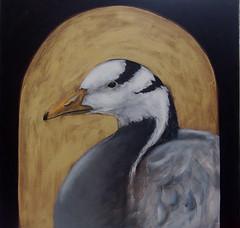 Painting by Suzy Sharpe (suzy sharpe) Tags: canada barn swan sheep wildlife goat goose owl sketches coot acrylics avocet bewicks suzysharpe wwwsuzysharpecouk suzysharpeartist