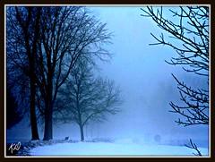 jan thaw 13