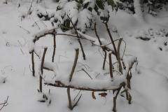 Snow Garden - 04