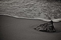 So lost (*ZooZoom) Tags: life sea bw beach water coral sand asia indianocean wave confused xp maldives maldiveislands so deepsadness lifeitself solost toocoldtoouncertain