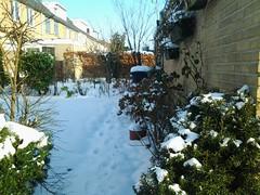 sneeuw bij de buren (Madelieflief) Tags: frozen 7 113picturesin2013 113in2013