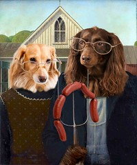 The sausage dog version of American Gothic (Doxieone) Tags: dog hot art english dogs farm pair satire gothic cream dachshund american blonde pitchfork glassses longhaired cs6 photosthop