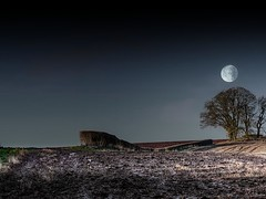 Take me to the moon (Eric Goncalves) Tags: morning trees winter moon snow cold green field grass night gloucestershire edge stark forestofdean rememberthatmomentlevel1