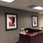 Schmidt Wealth Mgt Group art loan 1.22.2013 002