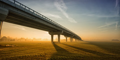 Foschia mattutina (Lo Zatto) Tags: nikond600 ponte foschia 1635mmf4vr nebbia fog mist ombra shadow mattina morning sole sun bridge strada road pilone campo campagna countryside