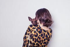 TINI STOESSEL // OHMYDOG! (Celeste Martearena) Tags: dog fashion puppy advertising photography kitten autum kitty editorial otoo fotografia tini labradoodle martina pinscher celeste pincher violetta martearena stoessel