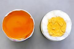 ein rohes Ei und ein gekochtes Ei - a raw egg and a boiled egg / Explorer 25.07.2016 (ingrid eulenfan) Tags: macromondays macro makro opposites gegenstze ei gekocht roh boiledegg egg lebensmittel