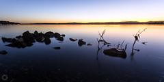 Warners Bay viii (ssoross1) Tags: warnersbay lakemacquarie