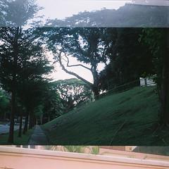 D1000009_lr (chi.ilpleut) Tags: 6x45 120 squareformat fujipro160ns film analogue ilovefilms twinlensreflex singapore august 2016 summertime oldhouse street ethnic neighbourhood outram oldest housing estates outdoor sunlight peacefulness