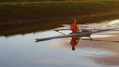 Row, row, row your boat... (Michael C. Hall) Tags: ireland kerry canal sunset row oar oarsman rower racing skiff boar scull calm sunny scenic mountains reflection