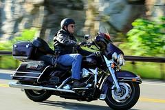 Harley-Davidson Classic 1608203567w (gparet) Tags: bearmountain bridge road scenic overlook motorcycle motorcycles goattrail goatpath windingroad curves twisties outdoor vehicle