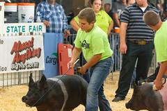 DSC_8402 (Dustin Cox Photography) Tags: colostatefair16 colorado pueblo statefair fair animals carnival 2016 fun attractions people 4h