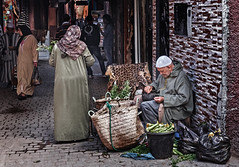 Marrakesh (Roaming the World) Tags: marrakesh marrakeshtensiftelhaouz morocco ma