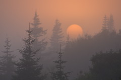 Un moment magique en Terre de Can (Patrice StG) Tags: qubec voyage trip travel journal fog brouillard brume ctenord northshore golfestlaurent gulf stlawrence stlaurent