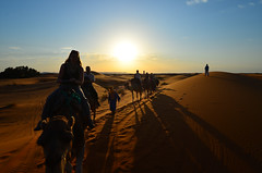 2011.08.23 18.08.08.jpg (Valentino Zangara) Tags: camel desert flickr morocco sunset merzouga meknstafilalet marocco ma dunes