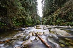 Lynn Creek #2 (luke.me.up) Tags: water flow longexposure creek nikon d810 nd110 tamron1530 haida150