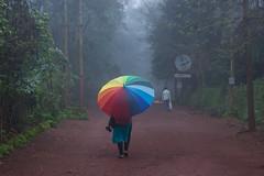 Matheran-4902 (Satish Chelluri) Tags: satishchelluri satishchelluriphotography matheran maharastra umbrella mansoon