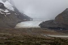Columbia Icefields Glacier (Paul G Howcroft) Tags: canadainrockiesandalaska2016 columbiaicefield glacier alberta canada icefield