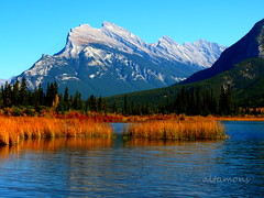 Mount Rundle - all dressed for fall (altamons) Tags: park autumn mountain canada mountains fall rockies nationalpark hiking rocky canadian hike national alberta banff rockymountains mountainview mountrundle rundle banffnationalpark mountainscape canadianrockies altamons