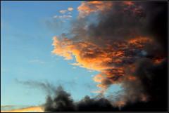sky paradise #4