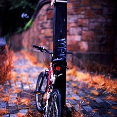 The Sound of Forgetting (Dr. RawheaD) Tags: street autumn fall grass bicycle dof bokeh 66 velvia f2 50 srs 80mm norita noritar