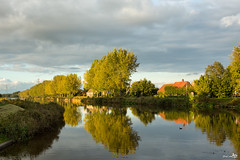 The last light of the day (BraCom (Bram)) Tags: autumn trees holland reflection reed water clouds canon duck bomen farm herfst nederland thenetherlands wolken explore riet eend noordbrabant boerderij roosendaal spiegeling canonef24105mmf4lisusm bracom canoneos5dmkiii