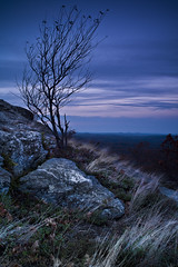 mount watatic (Kyle-Marshall-Photography) Tags: blue autumn sunset mountain tree fall grass leaves silhouette rock night clouds photography 50mm evening cool twilight nikon october flickr hiking newengland windy hike adobe mountaineering summit deciduous barren wispy lightroom giotto mountwatatic neutraldensityfilter nighthike hyperfocaldistance d700