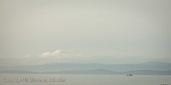 calm (observed.by.diane) Tags: ocean seascape mountains boat soft calm minimal simplicity lone minimalism simple gentle