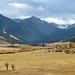 Montana Big 1