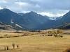 Montana Elk Hunt - Bozeman 29