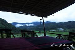 PhamonVillage-DoiInthanon-ChaengMai-Trip_By-P r i m t a a_E10886166-014
