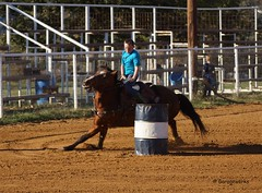 Kellyville Barrel Race October 28th (Garagewerks) Tags: horse oklahoma sport race cowboy all ride action outdoor barrels sony barrel racing rodeo poles tulsa cowgirl 70300mm kellyville tamron saddle countryliving barrelracing barrelrace f456 a65 roundupclub slta65v kellyvilleroundupclub