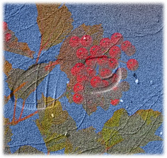 Footstep (Svein Bjerkholt) Tags: flowers art photoshop canon sand berries footstep me2youphotographylevel1