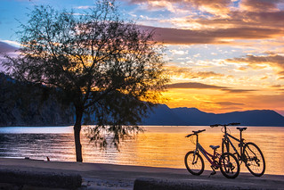 Bicycles at sunset