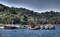 Fishing Floatilla (Dion Cragg) Tags: thailand boats pier asia fishingboats fishingboat hdr wwb trawlers