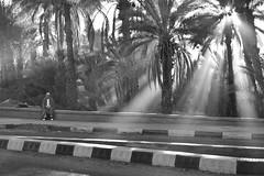 Marrocos (Iron P. Alves) Tags: nikon marrocos 18105mm d5100