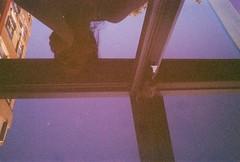 6 (Sevgi Gürcan) Tags: film analog 35mm mom photography analogue 2012 sevgi gürcan sevgigurcan sevgigürcan