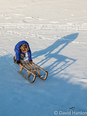Small boy pushing sledge (dave hanlon) Tags: family winter boy holiday snow playing cold kids children fun outside outdoors vakantie play lol dunes dune sneeuw hill familie kinderen shaddow kind recreation lachen moeder duinen pleasure awd lach active sneeuwpret sledge sledging slee muts pushing kou pret koud gezin duin spelen samen plezier relaxen uitrusten vakantiegevoel gelukkig laarzen geluk handschoen vreugde duingebied ontspanning recreatie amsterdamsewaterleidingduinen dezilk ontspannen sleeen sleetje blijheid samenspelen samenzijn jongegezin
