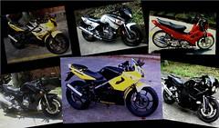 wp3 (nicklaj63) Tags: bikes z200 custom cbr fzr xrm
