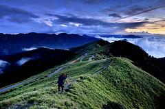 DSC_0163勇者( in Mt. Hehuan) (michaeliao27) Tags: