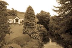 The Cottage Vintage (Brian Travelling) Tags: blackandwhite water vintage river mono scotland stream unitedkingdom burn gb fintry thecottage campsies
