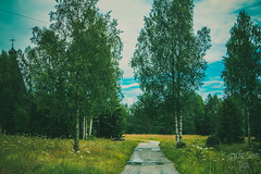 _MG_8896-69 (the_insk) Tags: village outdorse nature architecture green summer russia sky clouds