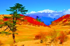 Autumn In The Himalayas.... A Photo Paint (pallab seth) Tags: singalilanationalpark beautifulbengal landscape juniperus meadow himalayas autumn colour kumbhakarna jannu kangchenjunga pandim nature sandakphu phalut trekking trekroute westbengal india map thesleepingbuddha sandakfu indian village dawn scene   travel tour tourism trek adventure reserve preserve horizontal outdoors asia plant tree hill forest nationalpark scenics beauty indianlandscapephotography topazsimplify41plugin painting photopainting corelpaintshopprox6ultimate
